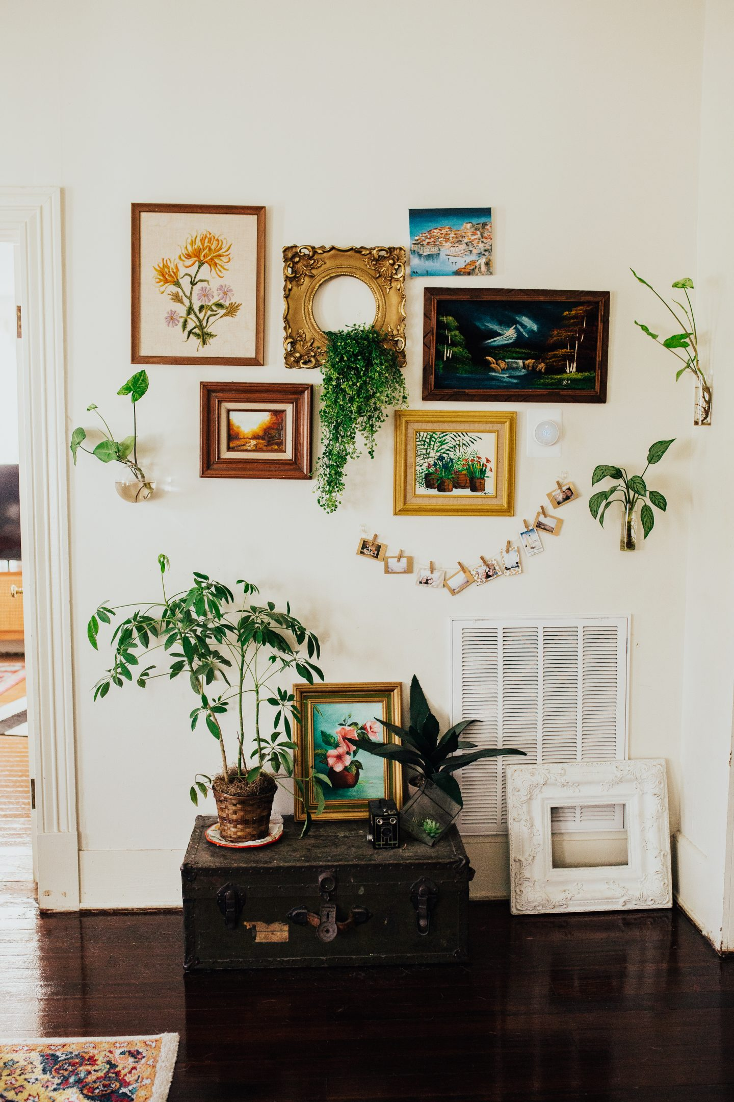 Want to have a jungalow vibe but worried about keeping your plants alive? Check out my top 5 indoor plants for beginners that are hard to kill even for those with the blackest of thumbs!