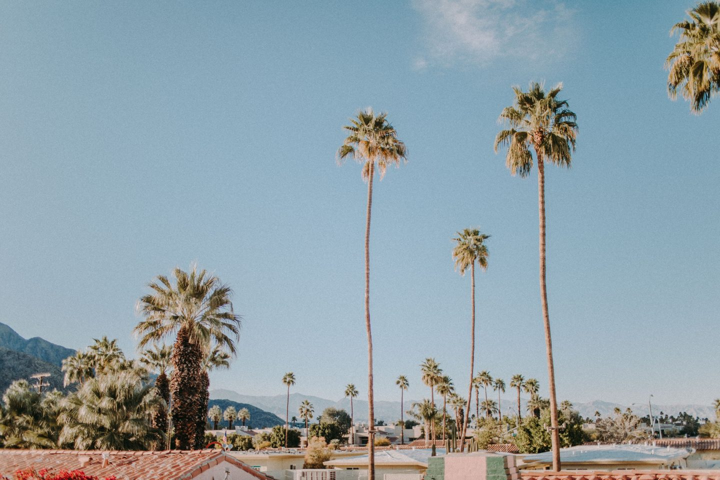 Joshua Tree National Park and Palm Springs, California are in my top 10 favorite beautiful places in the US to visit.